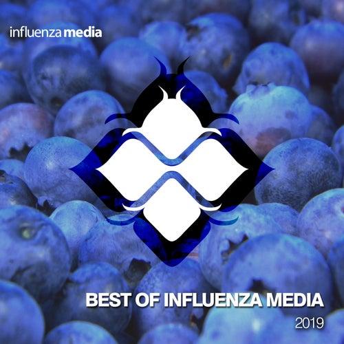 Influenza Recap 2019 von Various Artists