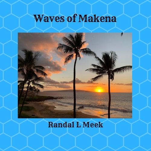 Waves of Makena von Randal L Meek