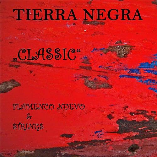 Classic - Flamenco Nuevo & Strings by Tierra Negra