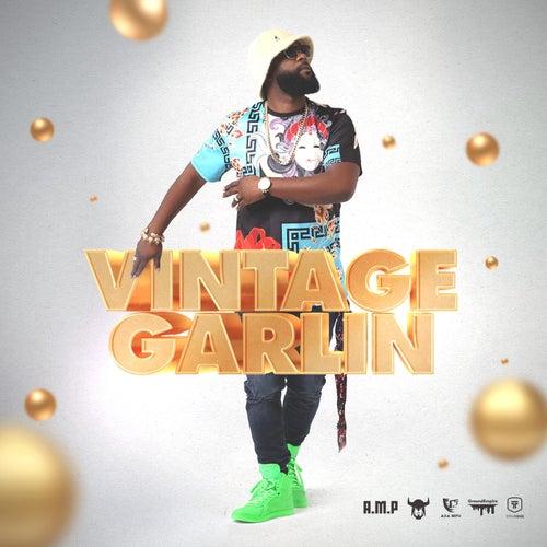 Vintage Garlin (feat. Fay-Ann Lyons) de Bunji Garlin