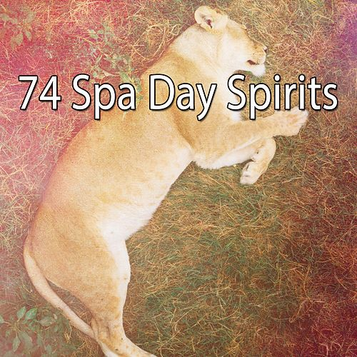74 Spa Day Spirits von Rockabye Lullaby