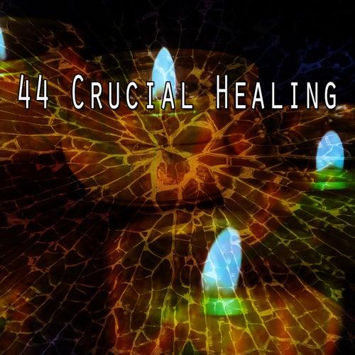 44 Crucial Healing de White Noise Research (1)
