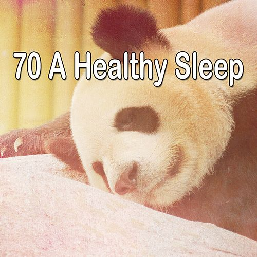 70 A Healthy Sleep de Smart Baby Lullaby