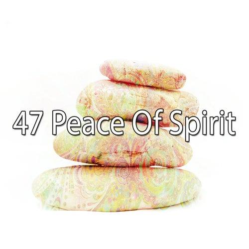 47 Peace of Spirit de Meditación Música Ambiente
