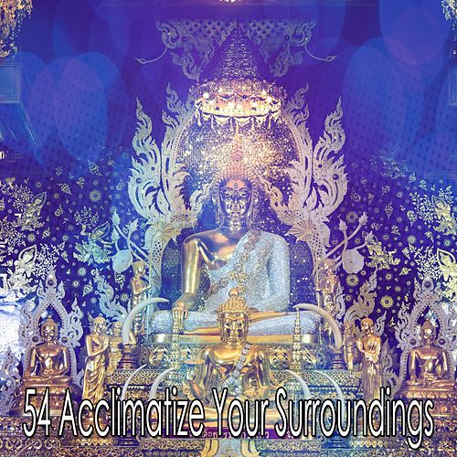 54 Acclimatize Your Surroundings de Zen Meditate