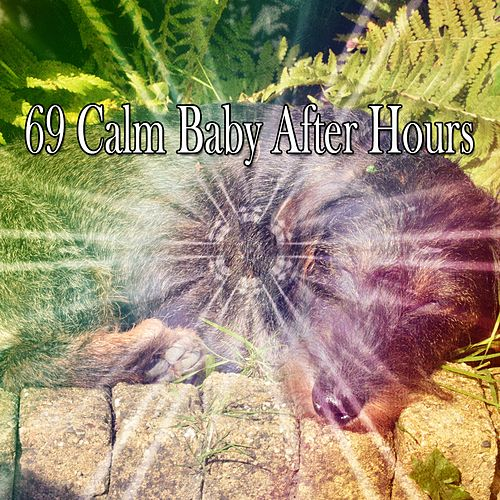 69 Calm Baby After Hours by Baby Sleep Sleep