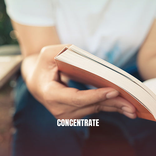Concentrate by Instrumental