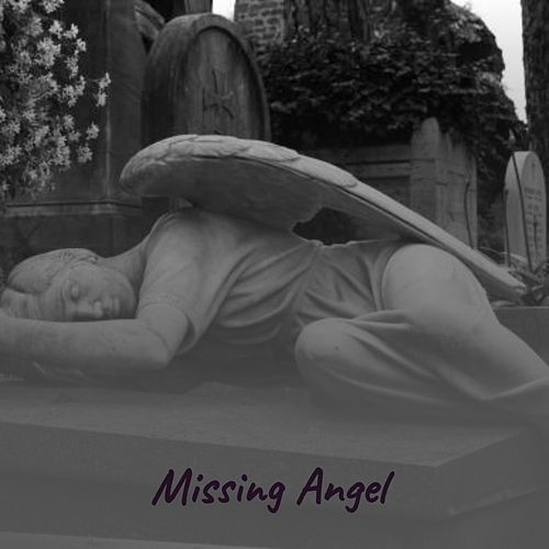 Missing Angel by Jim Reeves, Don Gibson, Vernon Oxford, Gene Autry, Ernest Tubb, Webb Pierce, Onie Wheeler, Ferlin Husky, Dusty Springfield, Solomon Burke, Burl Ives, Buck Owens, Hawkshaw Hawkins, Tex Ritter