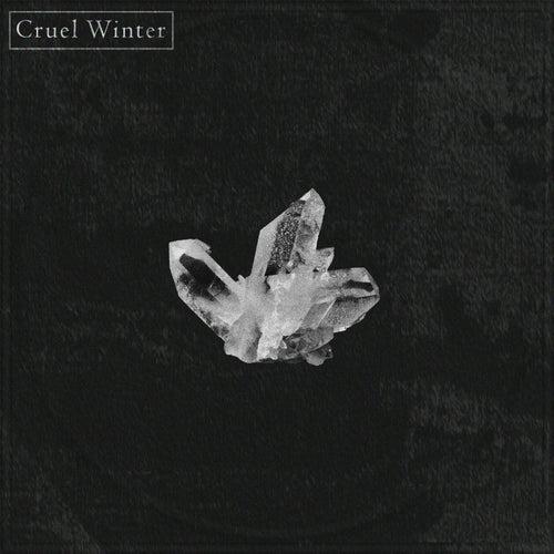 Cruel Winter von Zak B
