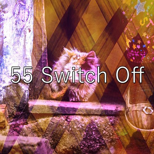55 Switch Off de Water Sound Natural White Noise