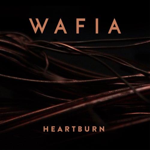 Heartburn by Wafia