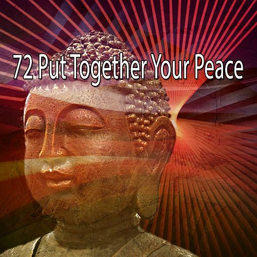 72 Put Together Your Peace de White Noise Research (1)
