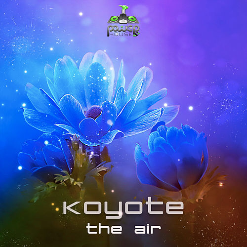 The Air by Koyote