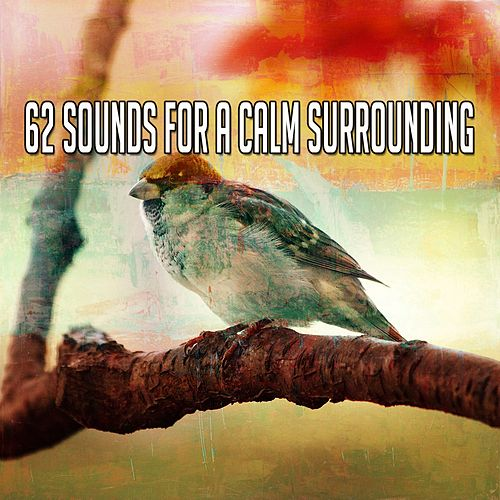 62 Sounds for a Calm Surrounding von Lullabies for Deep Meditation