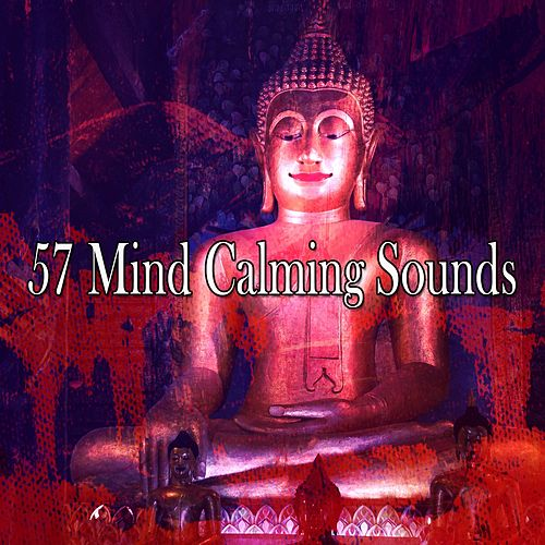 57 Mind Calming Sounds de Japanese Relaxation and Meditation (1)