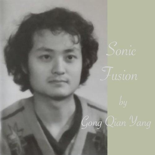 Sonic Fusion by Gong-Qian Yang