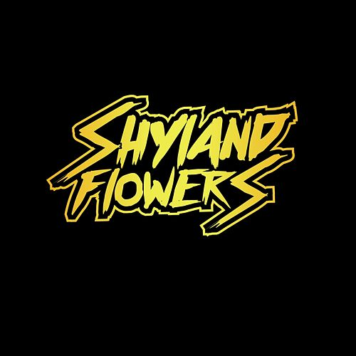 Fool's Gold (Demo) by Shyland Flowers