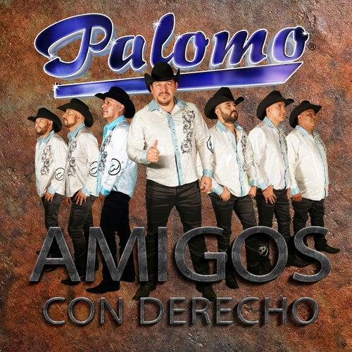 Amigos Con Derecho by Palomo