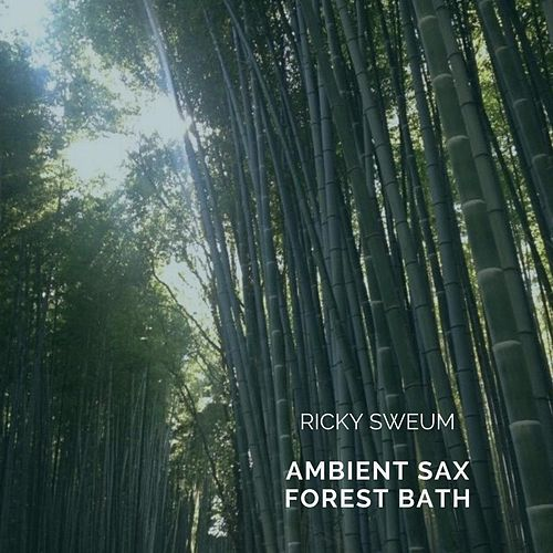 Ambient Sax Forest Bath by Ricky Sweum