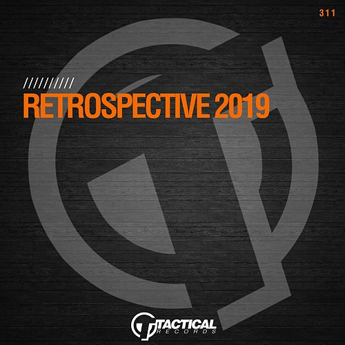 Retrospective 2019 by Various Artists
