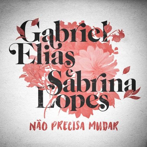 Não Precisa Mudar by Gabriel Elias