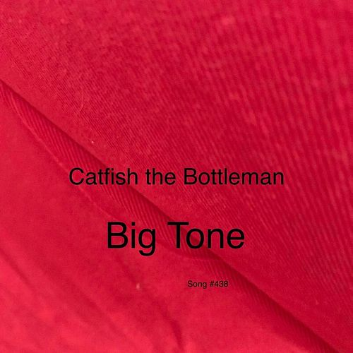 Big Tone van Catfish and the Bottlemen
