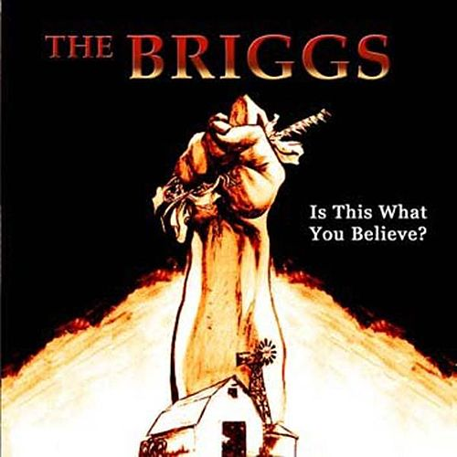 Is This What You Believe? de The Briggs