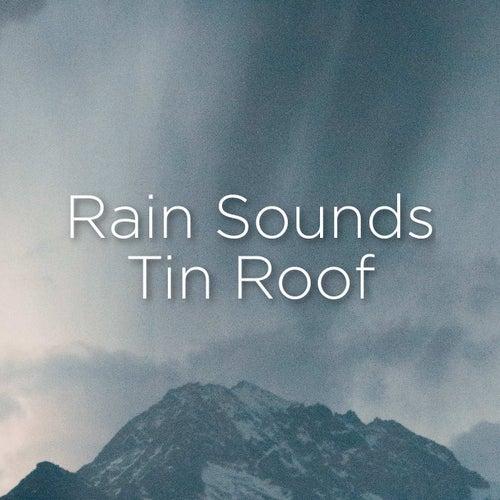 Rain Sounds Tin Roof von Rain Sounds