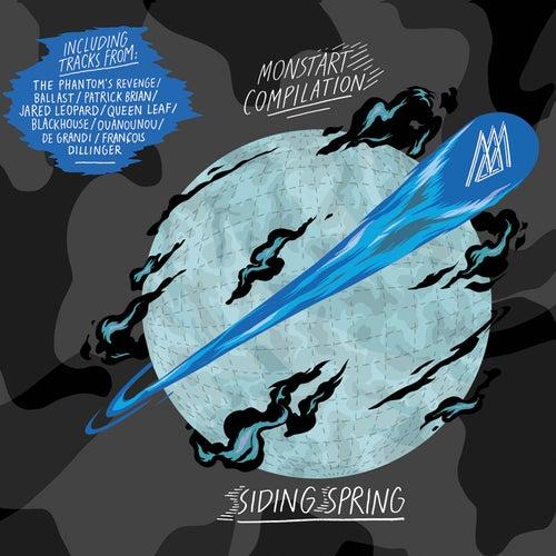Siding Spring Vol.1 von Various Artists