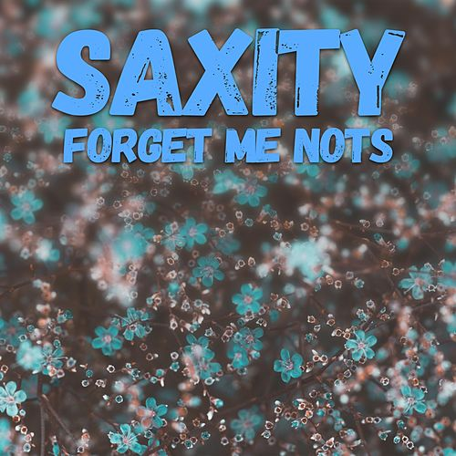 Forget Me Nots by Saxity