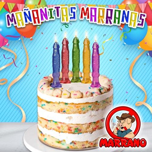 Mañanitas Marranas van Grupo Marrano