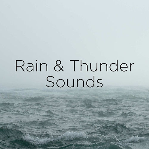 Rain & Thunder Sounds de Thunderstorm Sound Bank