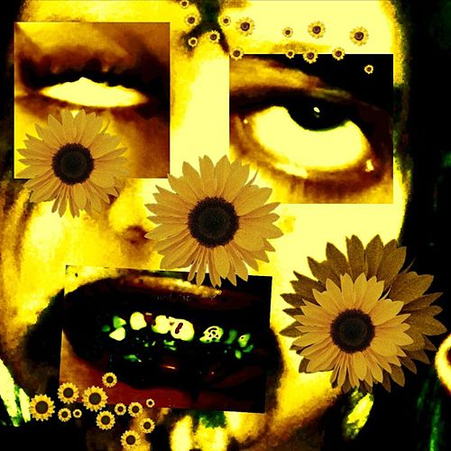 Sad Sunflower de Charlie corpse