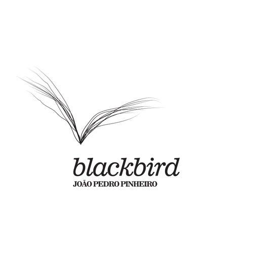 Blackbird von João Pedro Pinheiro