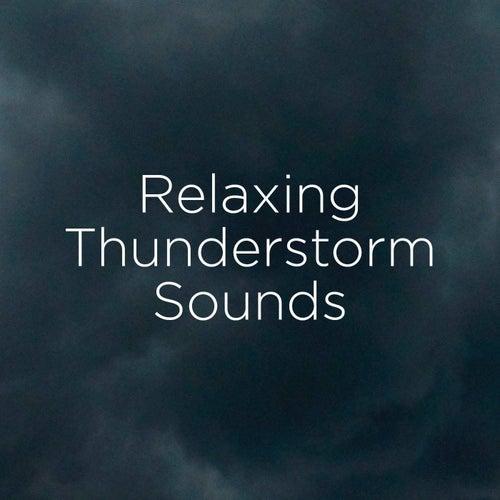 Relaxing Thunderstorm Sounds de Thunderstorm Sound Bank