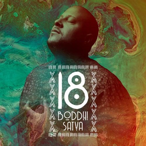 Boddhi Satva 18 by Boddhi Satva