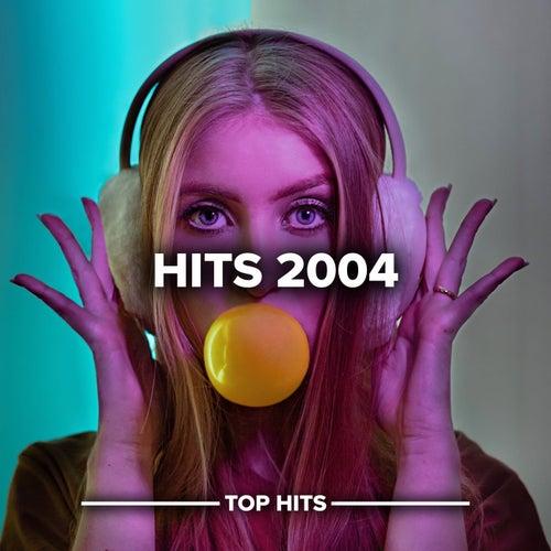 Hits 2004 von Various Artists