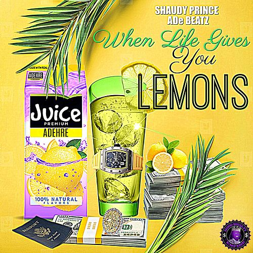 When Life Gives You Lemons by Shaudy Prince
