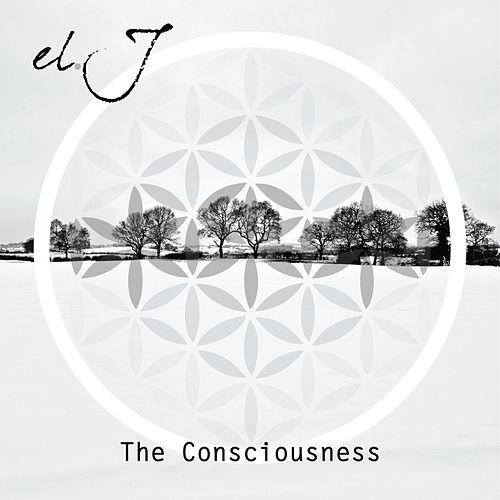 The Consciousness by J.