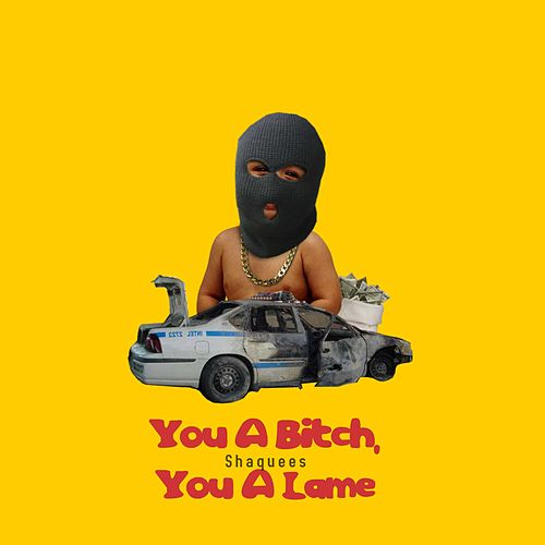 You a Bitch, You a Lame by Shaquees