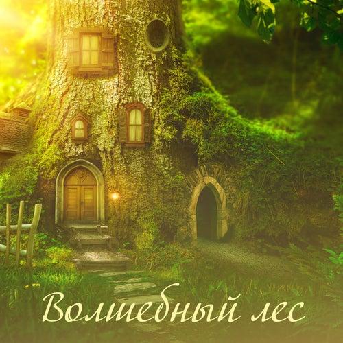 Волшебный лес von Tranquility Spa Universe