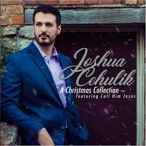 Call Him Jesus de Joshua Cehulik