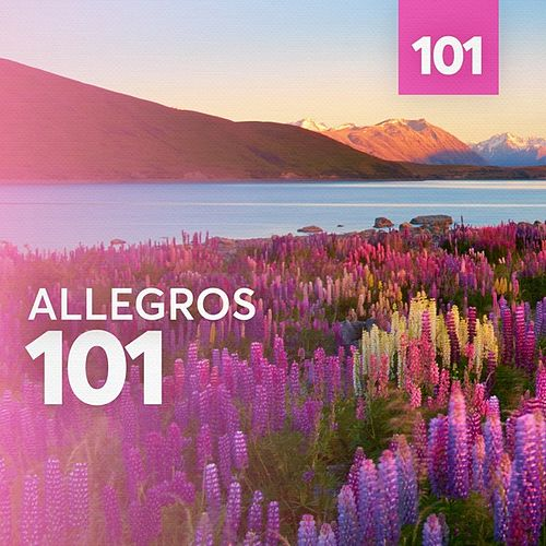 Allegros 101 by Various Artists