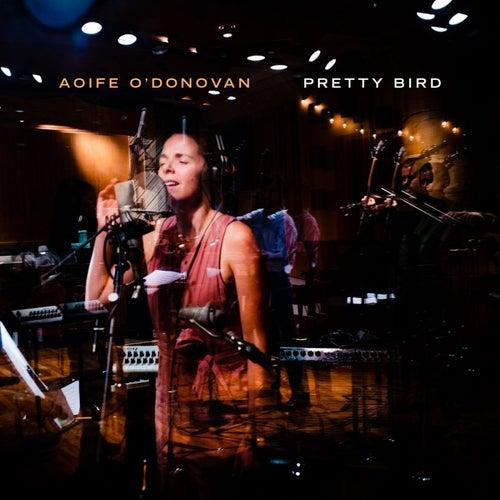 Pretty Bird by Aoife O'Donovan