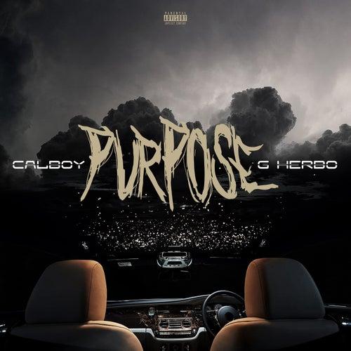 Purpose van Calboy