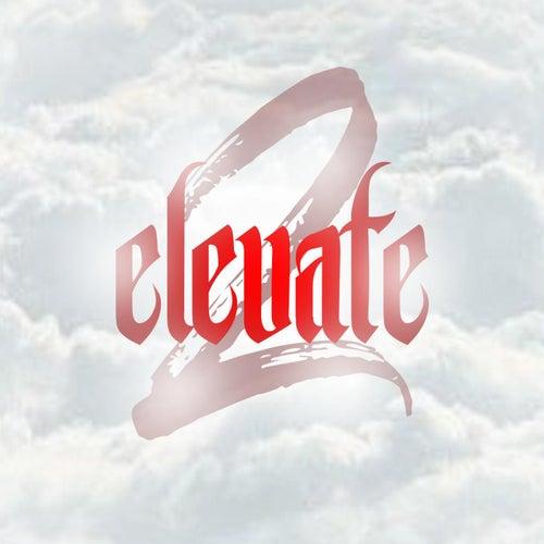 Elevate 2 von Various Artists