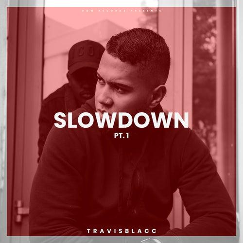 Slow Down, Pt. 1 by Travis Blacc