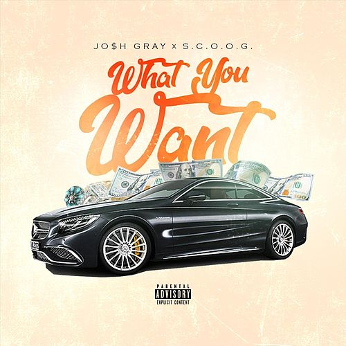 What You Want (feat. S.C.O.O.G.) by Josh Gray