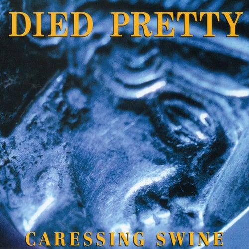 Caressing Swine von Died Pretty