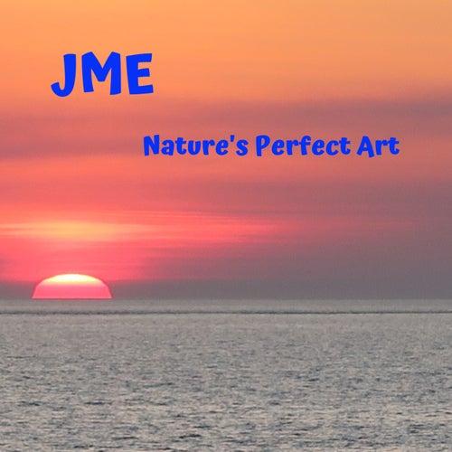 Nature's Perfect Art von JME